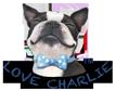 Love Charlie Logo